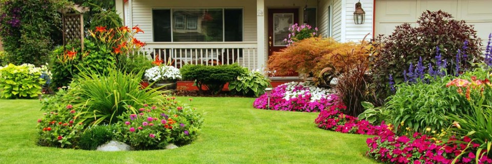 A Lawn and Garden Your