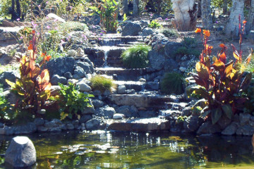 Fountains/Waterfalls/Ponds